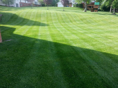Lawn Mowing Service In St Charles St Louis Area
