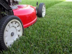 Lawn Mowing St. Charles