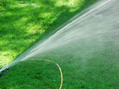 Lawn Care Maintenance Chesterfield, MO
