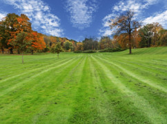Real Lawn Care Experts in Wentzville, MO