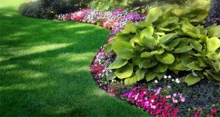 Lawn Care St Peters MO