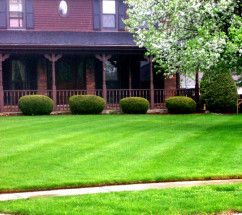 Lawn Care Ofallon MO